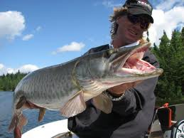 Better Technology for Finding More Muskies