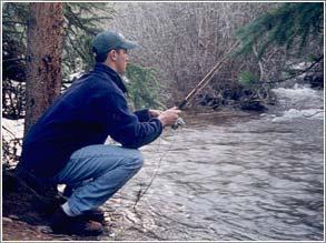 The Best Ultralight Fishing Rod