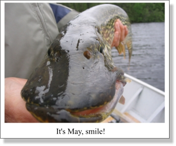 New Spring, Same Old Stuff For Pike.