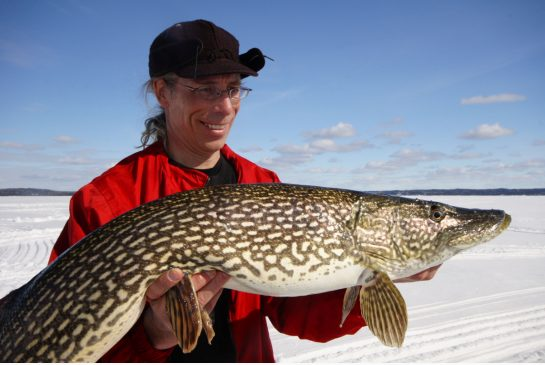 Where you should go to catch six kinds of fish in Ontario this winter